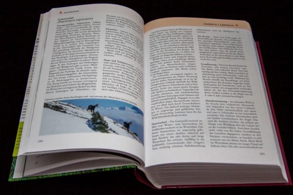Jagdbuch07