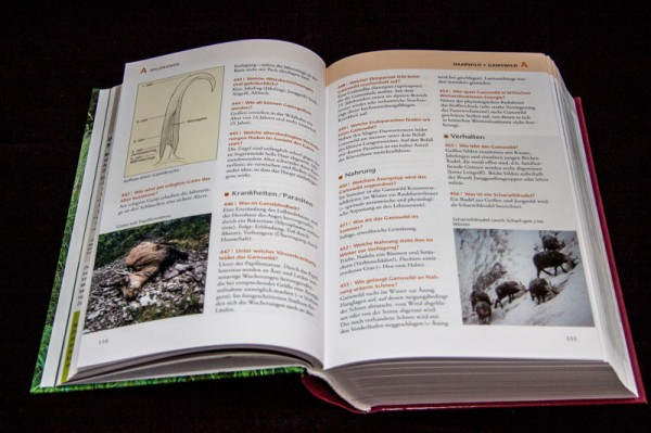 Jagdbuch08
