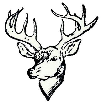 LogoWD