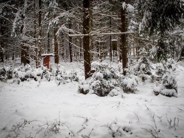 Winter2_01
