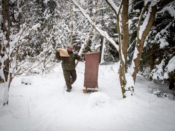 Winter2_02