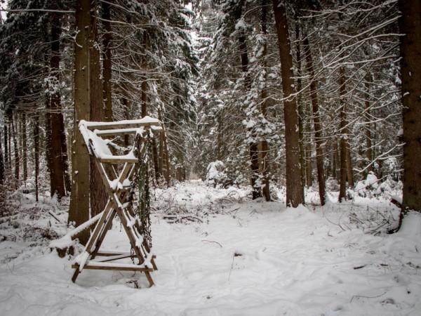 Winter2_15