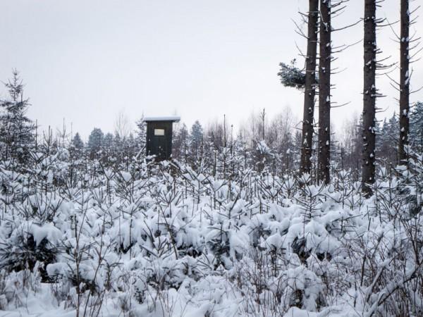 Winter2_17