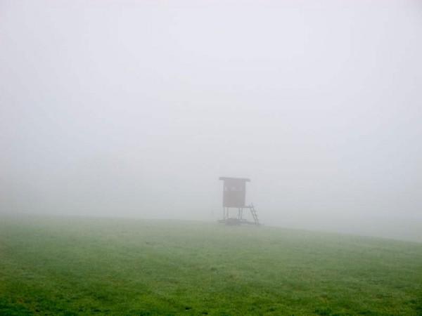 Ansitz im Nebel