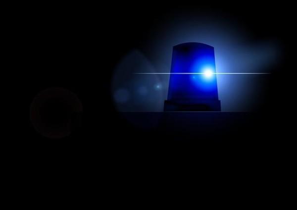 Wilderer – Polizei nimmt Tatverdächtige fest