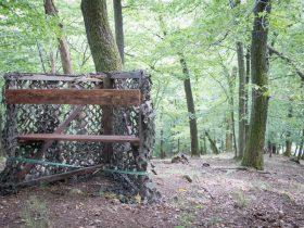 Jagdausflug in den Harz – Tag 2 – Revierarbeiten