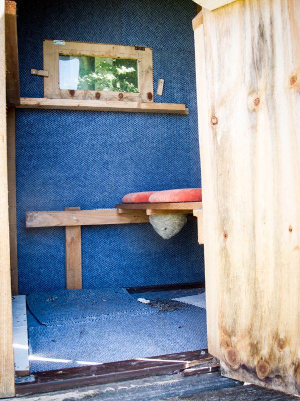 wieder ein wespennest in einer kanzel waidmanns dank. Black Bedroom Furniture Sets. Home Design Ideas