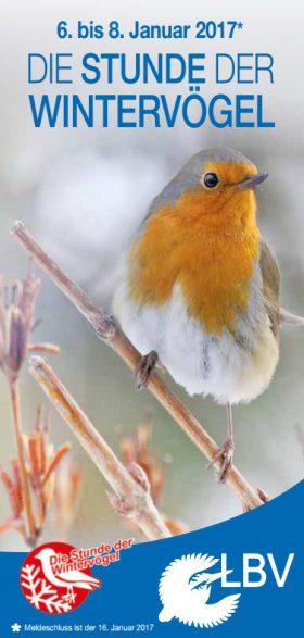 Wintervögel zählen