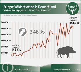 589.417 Wildschweine bundesweit erlegt