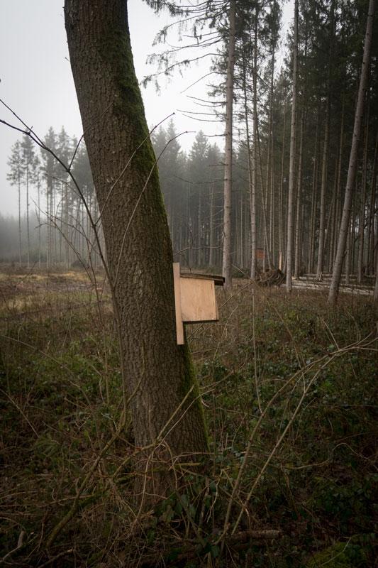 Tierfreund – Waldbauer