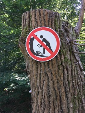 Pflücken verboten?
