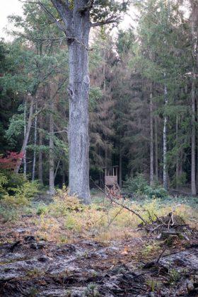 Jagdausflug nach Göritz – Tag 4