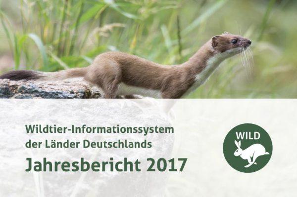 DJV-WILD-Bericht 2017
